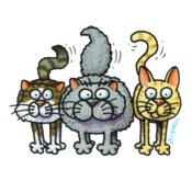 TS THREE CATS STANDING X LARGE