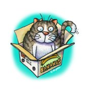 TS CAT IN BOX CUP ART  USE THIS
